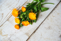 flowers of calendula - PhotoDune Item for Sale