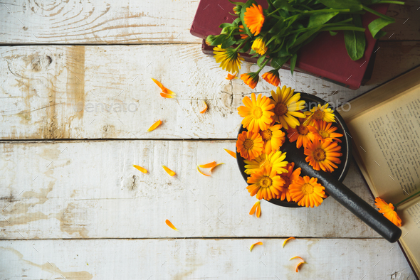 bouquet of calendula - Stock Photo - Images