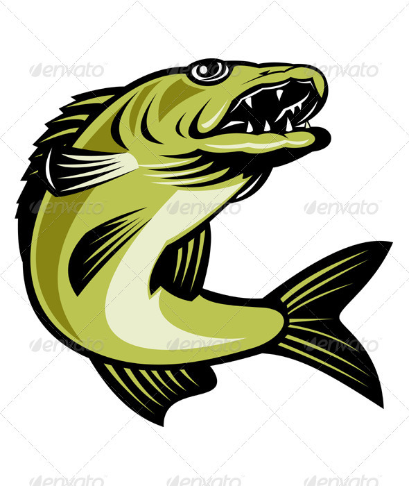 Walleye Fish Jumping - Animals Characters