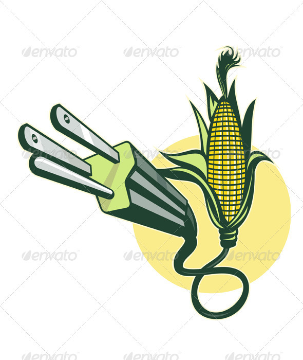 Corn Cob With Electric Plug - Organic Objects Objects