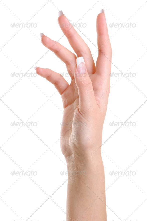One elegant female hand with beauty  fingers - Stock Photo - Images