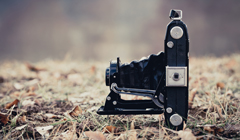 Old camera lovers