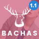 Bachas - Responsive WooCommerce WordPress Theme Nulled