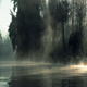 Sunset in the Steaming Swamp - VideoHive Item for Sale