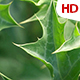 Green Leaf 0510 - VideoHive Item for Sale