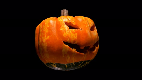 Horrible And Scary Pumpkin With Cut Out Eyes And Mouth With Teeth For Halloween It Turns Into A By Shakir R