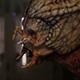 Alien Predator - VideoHive Item for Sale