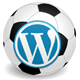 Soccer Engine WordPress Plugin