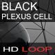 Black Plexus Cell - VideoHive Item for Sale