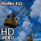 Sea Port and Cranes - VideoHive Item for Sale