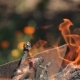 Branches Of Cherry Wood Stacked In a Barbecue Burning Bright Red Flames - VideoHive Item for Sale