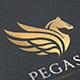 Pegasus Elite - GraphicRiver Item for Sale