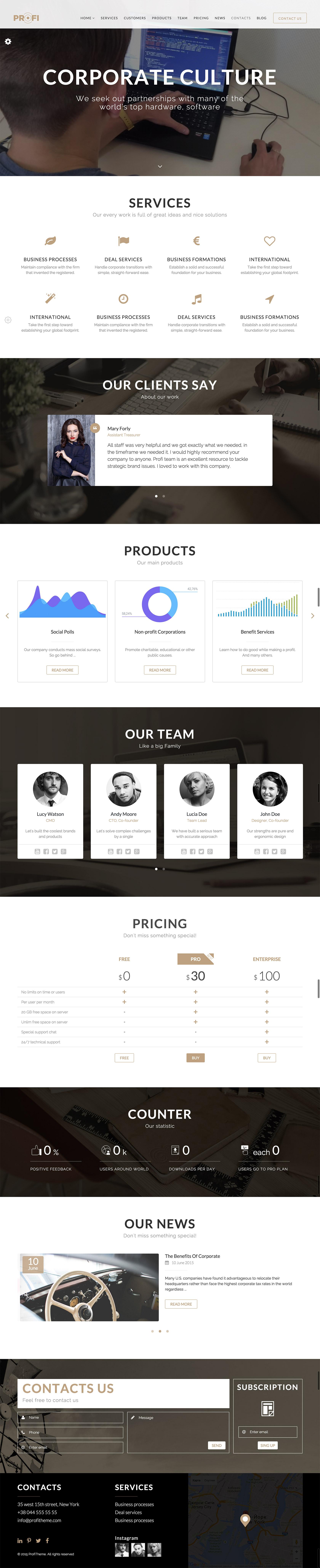 Profi - Multipurpose Corporate HTML Template by Iondigital   ThemeForest
