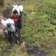 Porters Ascending Mount Kilimanjar - VideoHive Item for Sale