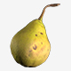Realistic 3d Pear - 3DOcean Item for Sale