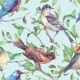 Watercolor Seamless Pattern, Birds On a Branch - GraphicRiver Item for Sale