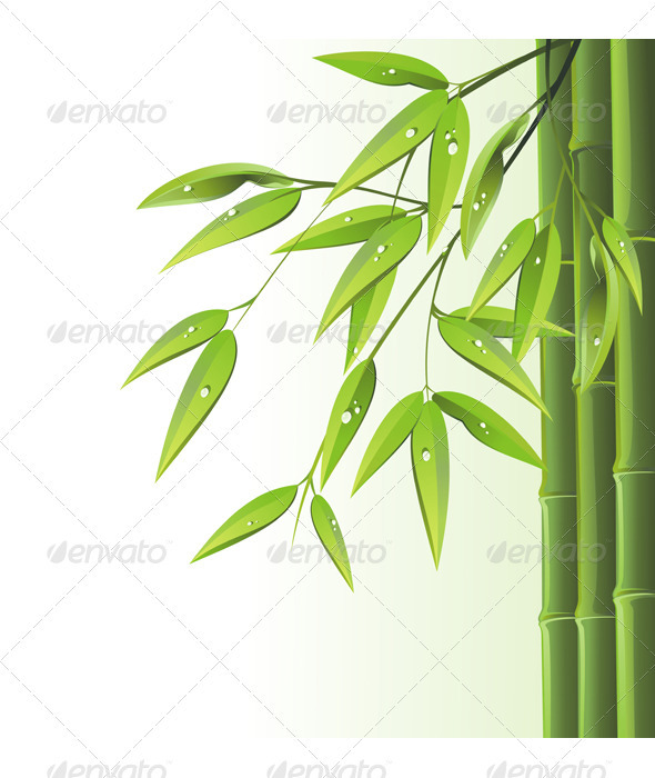 Bamboo background  - Decorative Vectors