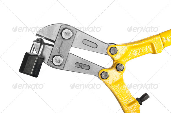 Bolt cutters on white - Stock Photo - Images