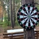 Game Darts In The Woods - VideoHive Item for Sale