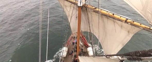 Video shot tall ship envato