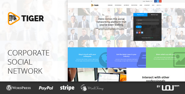TIGER – Social Network Theme for Companies & Professionals - Directory & Listings Corporate