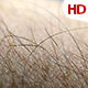 Human Skin 0616 - VideoHive Item for Sale