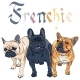 Domestic Dog French Bulldog Breed - GraphicRiver Item for Sale