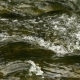 Splashes Of Water Rolling On a Mountain River - VideoHive Item for Sale
