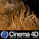 Organic Line Growth in Cinema 4D - VideoHive Item for Sale