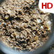 Organic Soil Test 0665 - VideoHive Item for Sale