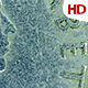 Old Coins 0552 - VideoHive Item for Sale