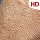 Human Skin 0617 - VideoHive Item for Sale