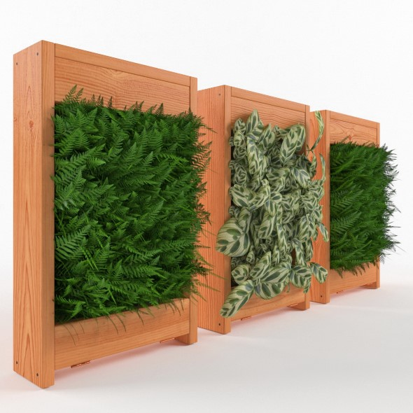 Plant for wall decoration - 3DOcean Item for Sale