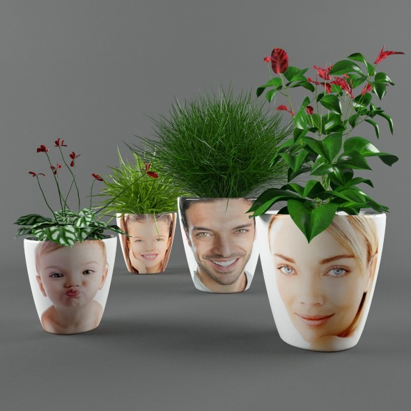 Plants in pots with photo - 3DOcean Item for Sale