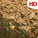 Organic Soil Test 0664 - VideoHive Item for Sale