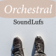 Classical Woodwinds - AudioJungle Item for Sale