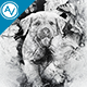 Canvas Photoshop Action - GraphicRiver Item for Sale