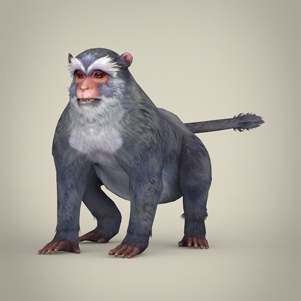 Game Ready White Monkey - 3DOcean Item for Sale