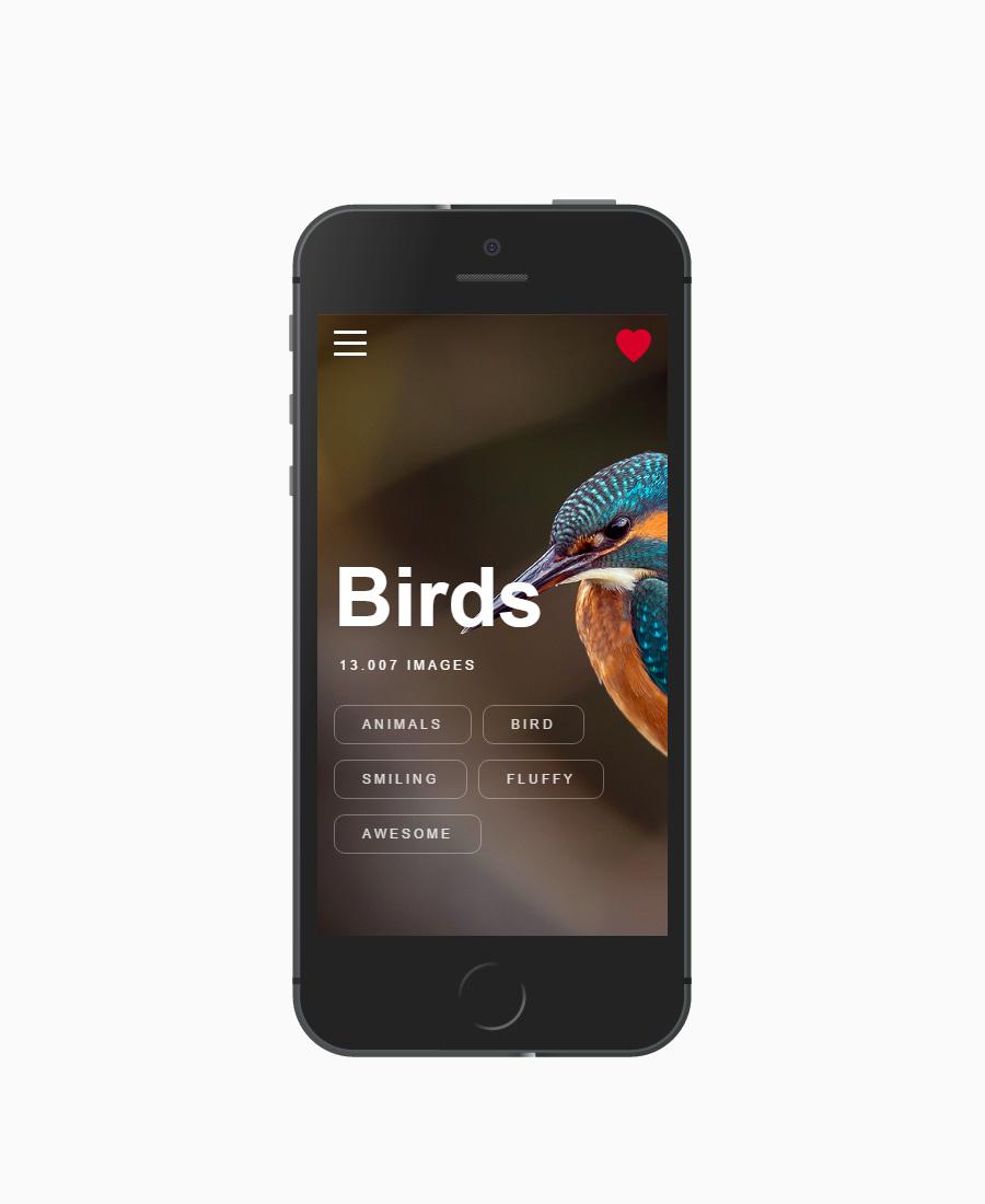 Card Slider — Modern & Universal HTML5, CSS3 and jQuery Slider