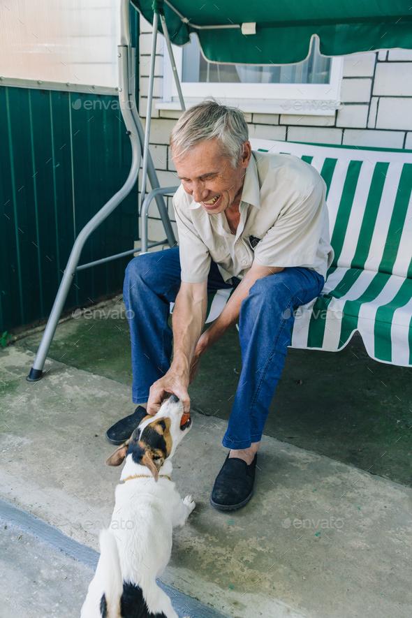 Senior man playing with dog - Stock Photo - Images