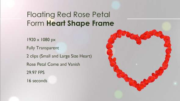 Floating Red Rose Petal Form Heart Shape Frame by FMedia | VideoHive