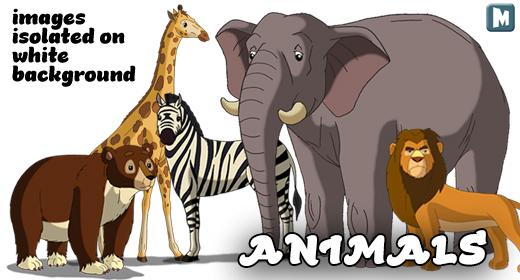 Animals isolated on White Background
