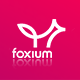 Foxium - Responsive Email Template - ThemeForest Item for Sale
