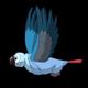 Blue Parrot Flies - VideoHive Item for Sale