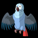Blue Parrot Gets Angry - VideoHive Item for Sale