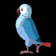 Blue Parrot Walks - VideoHive Item for Sale