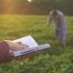 Two Farmers communicate Near Soybean Fields - VideoHive Item for Sale