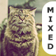 Mixed Photoshop Actions - GraphicRiver Item for Sale