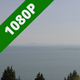 Black Sea Above the Treetops - VideoHive Item for Sale