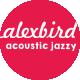 Joy Acoustic